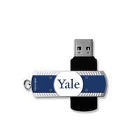 8GB USB Flash Drive with school logo