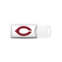 University of Chicago Custom Logo USB Drive Push 32GB Silver