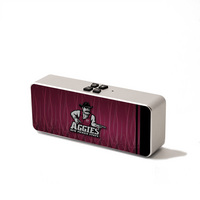 Portable Bluetooth Speaker, connects to any Bluetooth enabled device