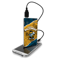 Portable rechargeable battery pack for your mobile device