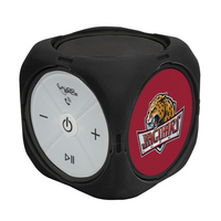 IUPUI Custom Bluetooth Speaker Cube
