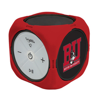 Boston University Custom Bluetooth Speaker Cube