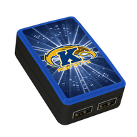 Kent State University Custom Dual Port Wall Charger
