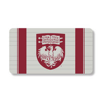Centon Custom Logo Credit Card Power Bank Univ of Chicago