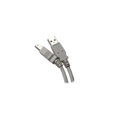 10 FEET USB 2.0 A TO B, GRAY