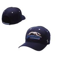 Assumption College Competitor Hat