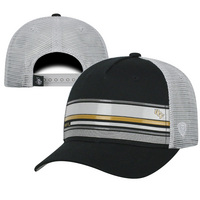 Top of the World Augie Team Adjustable Hat
