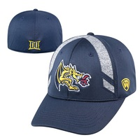 Transition One Fit Hat