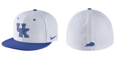Nike True Fitted Dri Fit Hat