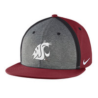 Nike Youth Sideline True Players Cap