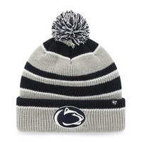 Whitman Cuff Knit Hat