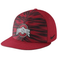 Nike Ohio State Players Game Day True Snapback Hat