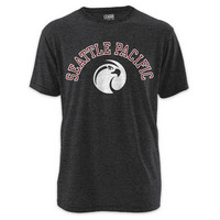 Victory Falls Twisted Tri Blend Tee