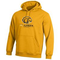 Southern Mississippi Eagles Under Armour Cold Gear Loose Fit Hoodie