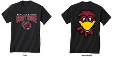 South Carolina Gamecocks New World Graphics Youth Attitude TShirt