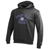 Champion Youth Hoodie
