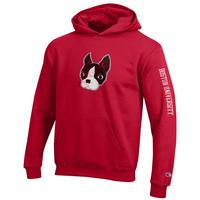 Boston Terriers Champion Youth Hoodie