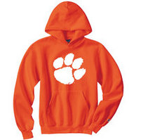 Clemson Tigers Champion Youth Hoodie