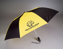 Southern Mississippi Eagles Automatic Folding Umbrella