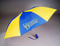 Delaware Blue Hens Automatic Folding Umbrella