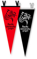 6 in. x 15 in. Pennant