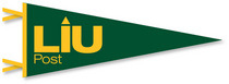 Logo Pennant from Collegiate Pacific