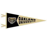 Multi Color Logo Pennant from Collegiate Pacific