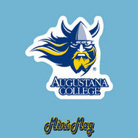 Augustana Vikings Mini Car Magnet
