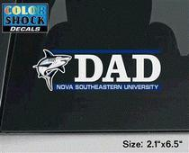Colorshock Decal