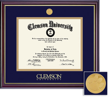 Framing Success Windsor Diploma Frame in a Gloss Cherry Finish, Gold Trim