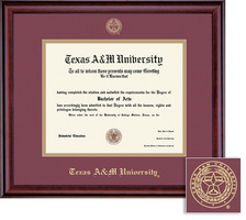 Framing Success Classic BA, MA, PhD, DVM Diploma Frame, Dbl Matted in Burnished Cherry Finish