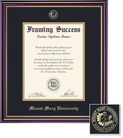 Framing Success Windsor BA Diploma Frame Dble Matted in Gloss Cherry Finish, Gold Trim
