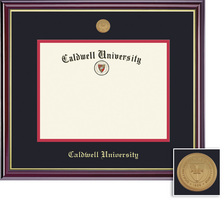 Framing Success Windsor MA Diploma Frame with Medallion Dbl Mat in Gloss Cherry Finish, Gold Trim