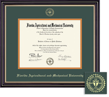 Framing Success Prestige Doctorate Diploma Frame, Double Matted in Satin Black Finish, Gold Trim