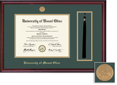 Framing Success Classic Medallion DiplomaTassel Frame,Double Matted in burnished cherry finish