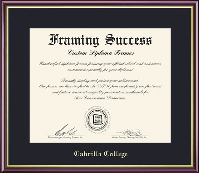 Framing Success Academic Diploma Frame, High Gloss Cherry Finish with Gold Inner Bevel, Slim Contour