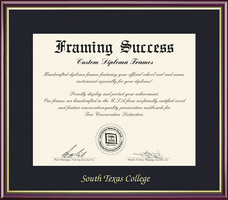 Framing Success Academic Diploma Frame in High Gloss Cherry Finish, Gold Inner Bevel. Bachelors