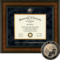 Church Hill Classics Presidential Diploma Frame, Medical