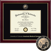 Church Hill Classics Masterpiece Diploma Frame, Medical