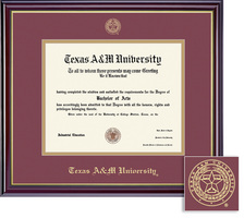 Framing Success Windsor BA, MA, PhD, DVM Diploma Frame, Dbl Matted Gloss Cherry Finish, Gold Trim