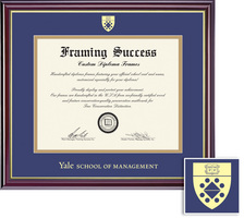 Framing Success Windsor Mgmt. Diploma Frame, Dbl Mat in a High Gloss Cherry Finish, Gold Inner Bevel