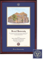 Framing Success Classic DiplomaLitho Frame   BlueGold Matted Diploma Frame