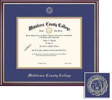 Framing Success Frame Single Mat in HighGloss Cherry Finish with Gold Inner Bevel and Slim Contour