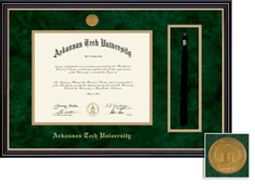 Framing Success Prestige Moulding with Tassel, Double Mat with Beautiful Gold Accents