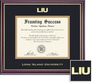 Framing Success Classic Diploma, Double Mat High Gloss Cherry Finish with Gold Inner Bevel