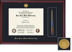 Framing Success Classic Diploma Tassel Frame with Medallion, Single Mat Rich Burnished Cherry Finish