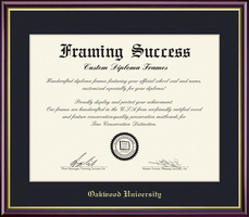 Framing Success Diploma, Single Mat High Gloss Cherry Finish Gold Inner Bevel Slim Contour