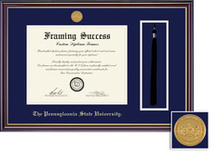 Framing Success Prestige Law Medallion Diploma, Double Mat in satin black finish