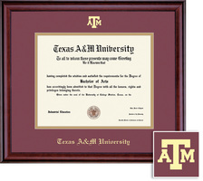 Framing Success Classic BAMAPhDDVM Diploma, Dbl Mat in rich burnishedcherry finish