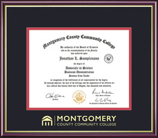 Framing Success Academic Diploma, Dbl Mat highgloss cherry finish gold inner bevel slim contour